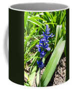Blue Sage Coffee Mug