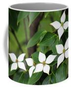 Blue Shadow Dogwood Flowers Coffee Mug