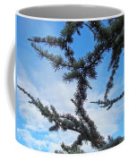Blue Sky Art Prints White Clouds Conifer Pine Branches Baslee Troutman Coffee Mug