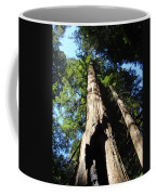 Blue Sky Big Redwood Trees Forest Art Prints Baslee Troutman Coffee Mug