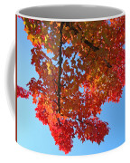 Blue Sky Red Autumn Leaves Sunlit Orange Baslee Troutman  Coffee Mug