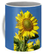 Blue Sky Sunflower Day Coffee Mug