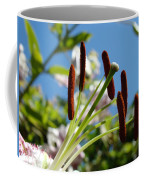 Blue Sky Sunny Floral Pink Lily Flower Baslee Troutman Coffee Mug