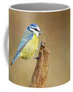 Blue Tit Perched Coffee Mug