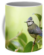 Blue Tit With Caterpillar Coffee Mug