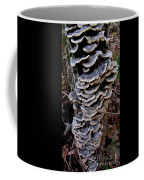 Blue Turkeytail Tree Coffee Mug