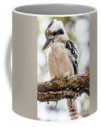 Blue-winged Kookaburra Coffee Mug