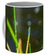 Blue Wings Coffee Mug