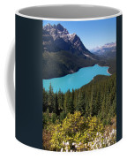 Blue Wolf In The Valley Coffee Mug