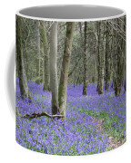 Bluebell Wood Effingham Surrey Uk Coffee Mug