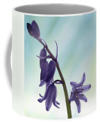 Bluebells 2 Coffee Mug