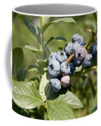 Blueberries On Blueberry Bush Coffee Mug