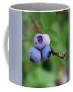 Blueberries On The Vine 3 Coffee Mug