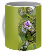 Blueberries On The Vine 7 Coffee Mug