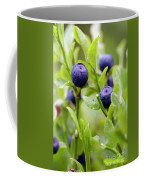 Blueberry Shrubs Coffee Mug