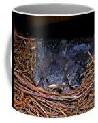 Bluebird Babies Dreaming Of Flight Coffee Mug
