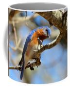 Bluebird Curiousity Coffee Mug