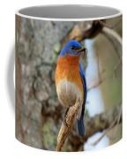 Bluebird Dad Coffee Mug