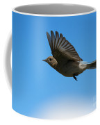 Bluebird Glide Coffee Mug