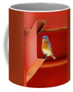Bluebird On Red Coffee Mug