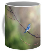 Bluebird Perched On A Tree Branch In The Sunlight Coffee Mug
