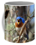 Bluebird Temper Coffee Mug
