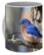 Bluebird Vibrance Coffee Mug
