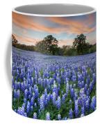 Bluebonnets On A Spring Evening 403-1 Coffee Mug