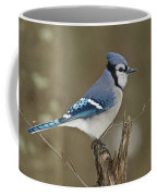 Bluejay 012 Coffee Mug