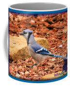 Bluejay Profile Coffee Mug