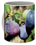 Blues In The Florida Berries Coffee Mug