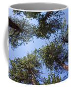 Bluff Lake Forest 2 Coffee Mug