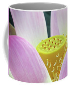 Blumen Des Wassers - Flowers Of The Water 06 Coffee Mug