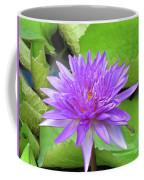 Blumen Des Wassers - Flowers Of The Water 17 Coffee Mug