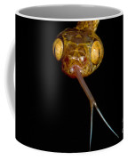 Blunthead Tree Snake Coffee Mug