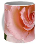 Blush Pink Rose Coffee Mug