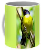 Boastful Bird Coffee Mug