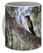 Boat - Tailed Grackle  Coffee Mug