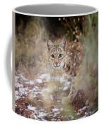 Bob On The Prowl Coffee Mug