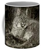 Bobcat In Black And White Coffee Mug
