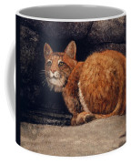 Bobcat On Ledge Coffee Mug
