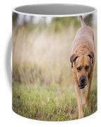 Boerboel Dog Coffee Mug