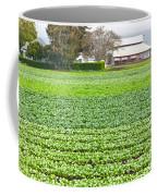 Bok Choy Field And Farm Coffee Mug