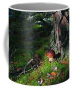 Boletus Mushroom Coffee Mug