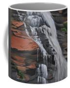 Bone Creek Falls Coffee Mug