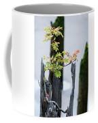 Bonsai Mountain-ash Coffee Mug