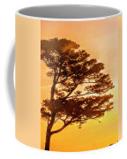 Bonsai Pine Sunrise Coffee Mug