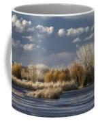 Bosque Del Apache 1 Coffee Mug
