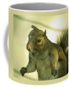 Bossy Squirrel Coffee Mug