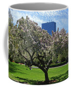 Boston Public Garden Spring Tree Boston Ma Coffee Mug